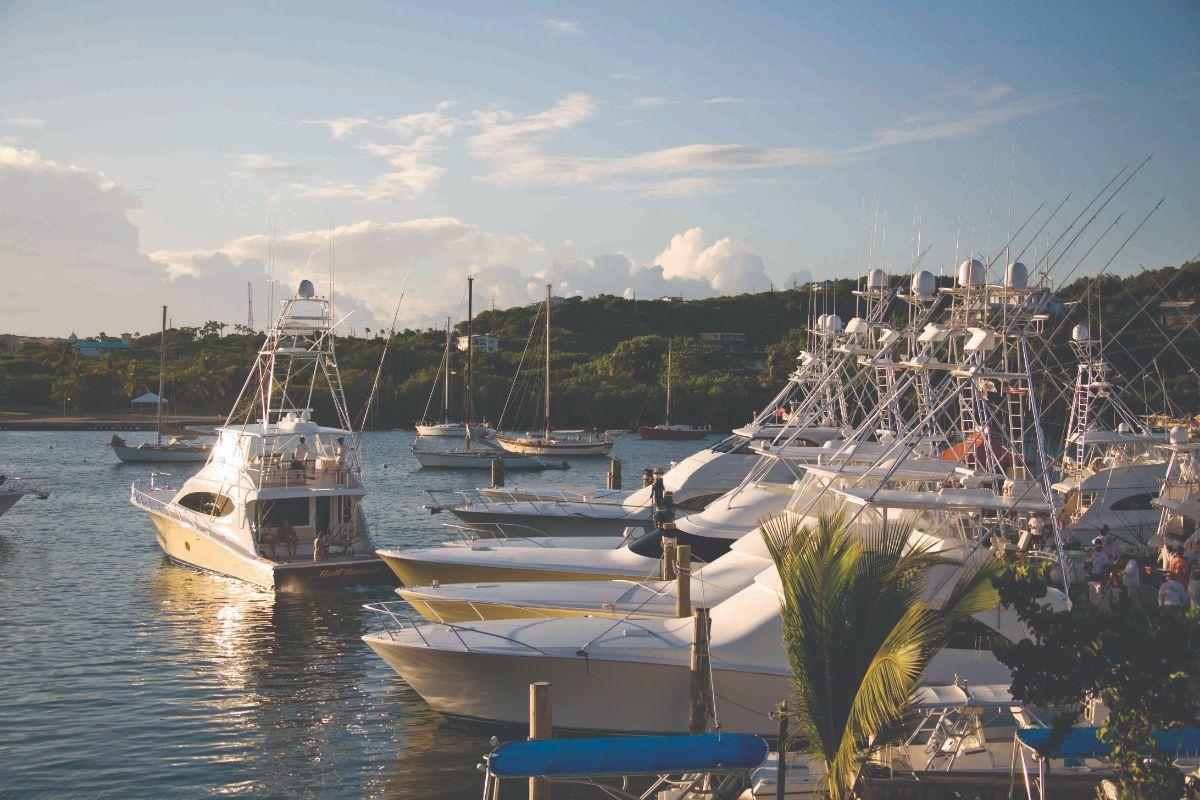 01-American Yacht Harbor-St Thomas Marina -Leaving