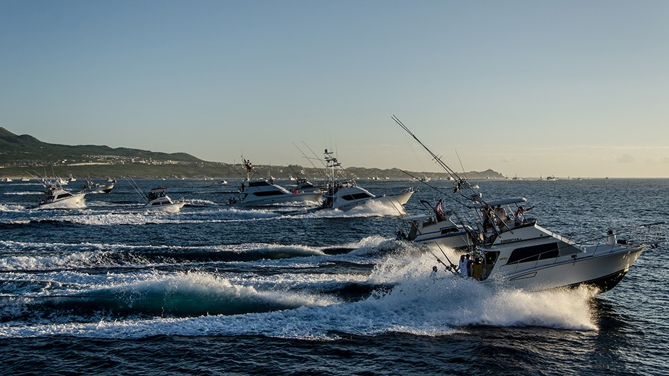 Marina Cabo San Lucas - Mexico Marina - sport fishing sportfishing