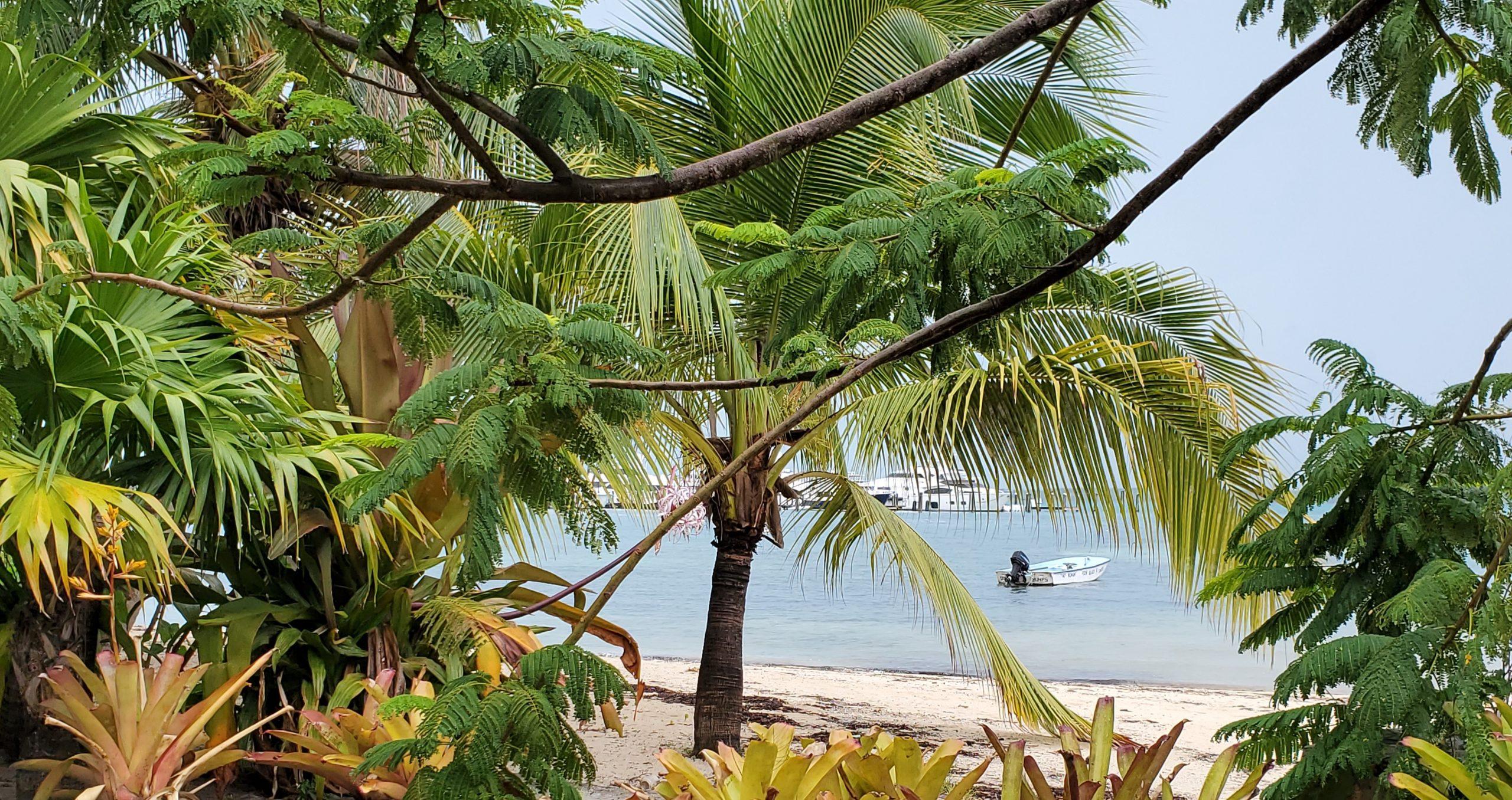 07-2021 Briland Club Marina Beach Looking at Vessels